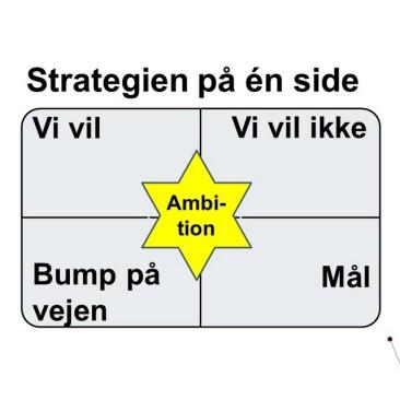Strategi/udvikling